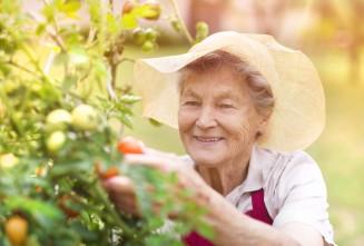 Betreuungsassistent für leichte Gartenarbeit