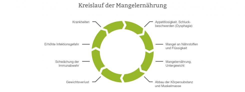 Kreislauf der Mangelernährung